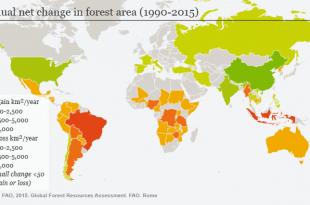 erdőirtas térkép