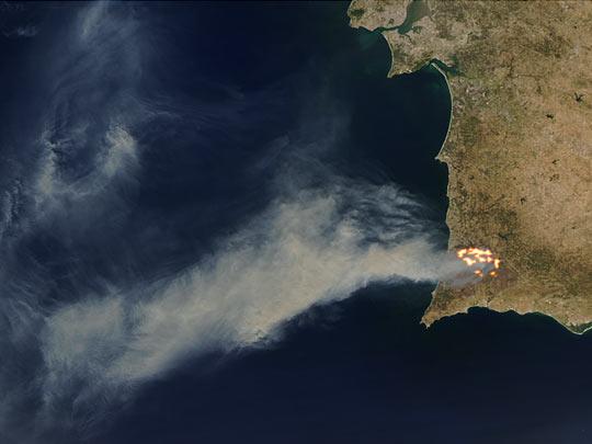 Erdőirtás égetéssel
